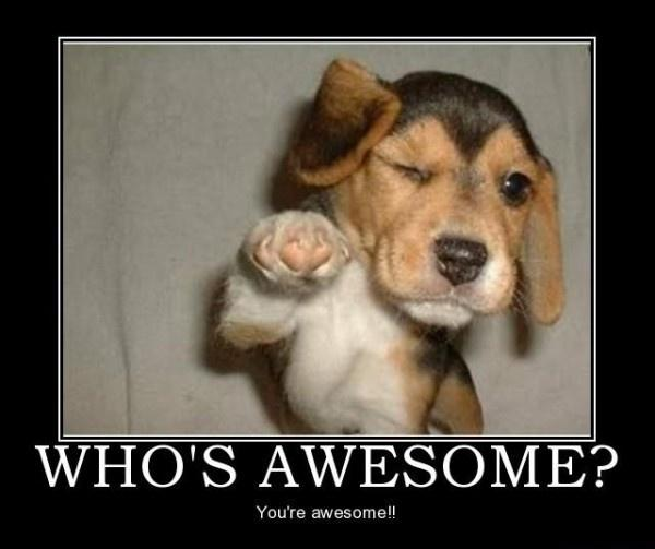Who's awesome? You're awesome Picture Quote #2