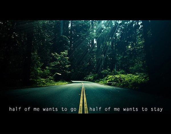 Half of me wants to go, half of me wants to stay Picture Quote #1