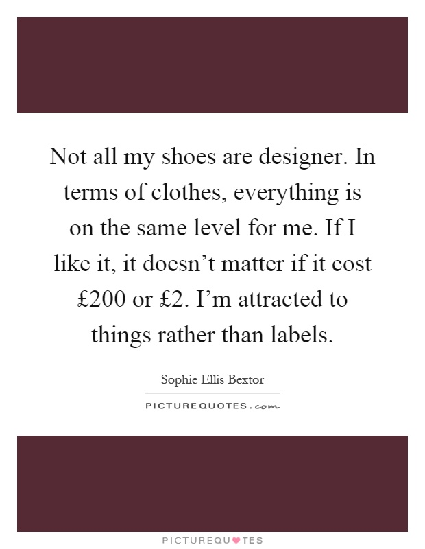 Not all my shoes are designer. In terms of clothes, everything is on the same level for me. If I like it, it doesn't matter if it cost £200 or £2. I'm attracted to things rather than labels Picture Quote #1