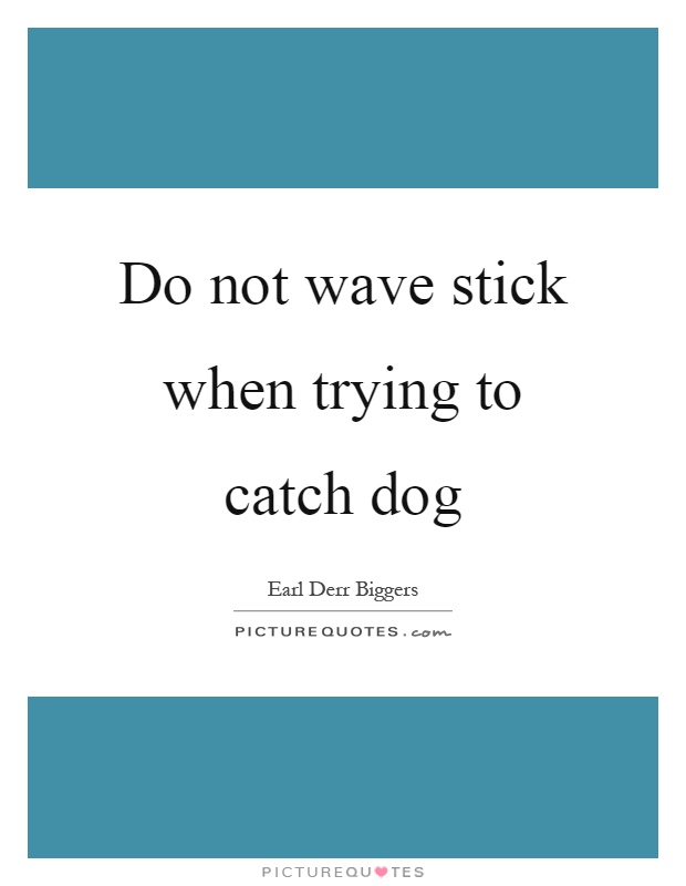 Do not wave stick when trying to catch dog Picture Quote #1