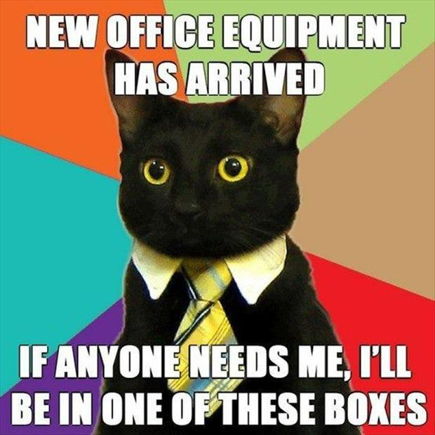 New office equipment has arrived. If anyone needs me, I'll be in one of these boxes Picture Quote #1