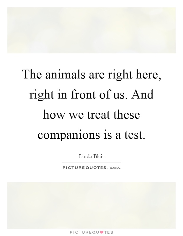 The animals are right here, right in front of us. And how we treat these companions is a test Picture Quote #1