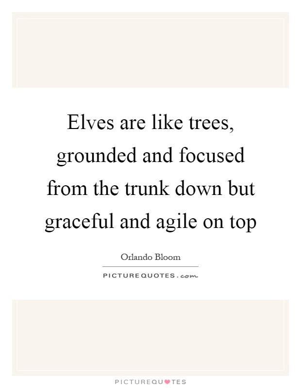 Elves are like trees, grounded and focused from the trunk down but graceful and agile on top Picture Quote #1