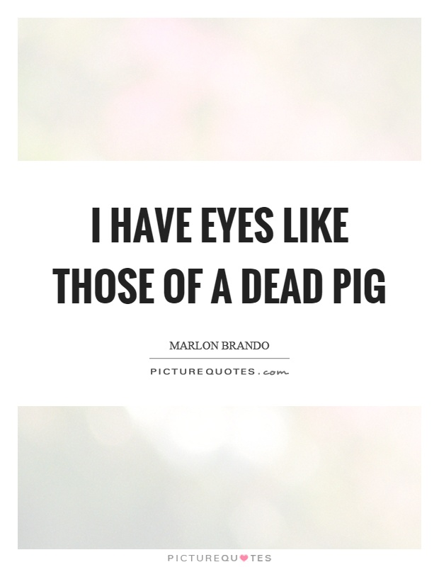 I have eyes like those of a dead pig Picture Quote #1