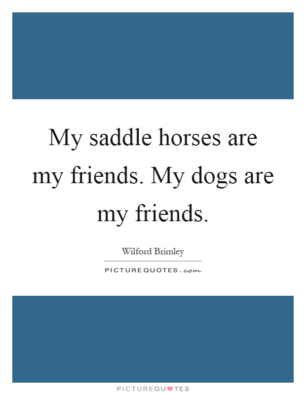 My saddle horses are my friends. My dogs are my friends Picture Quote #1
