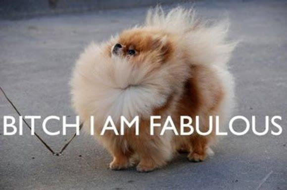 Bitch I am fabulous Picture Quote #1