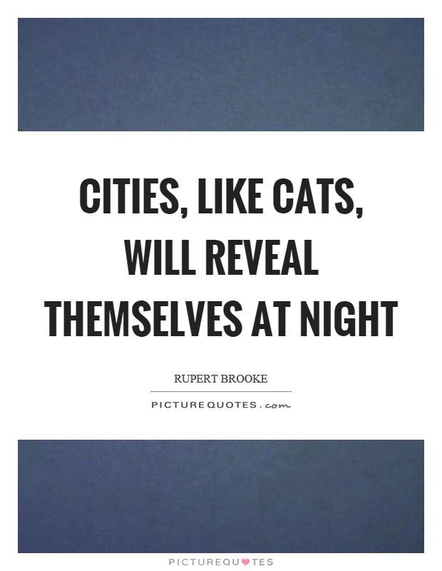 Cities Like Cats Will Reveal Themselves At Night