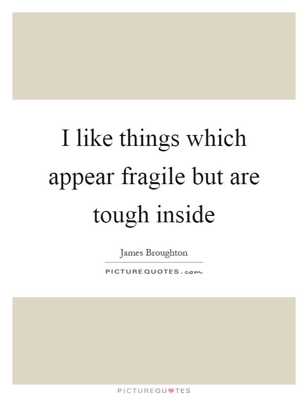 I like things which appear fragile but are tough inside Picture Quote #1