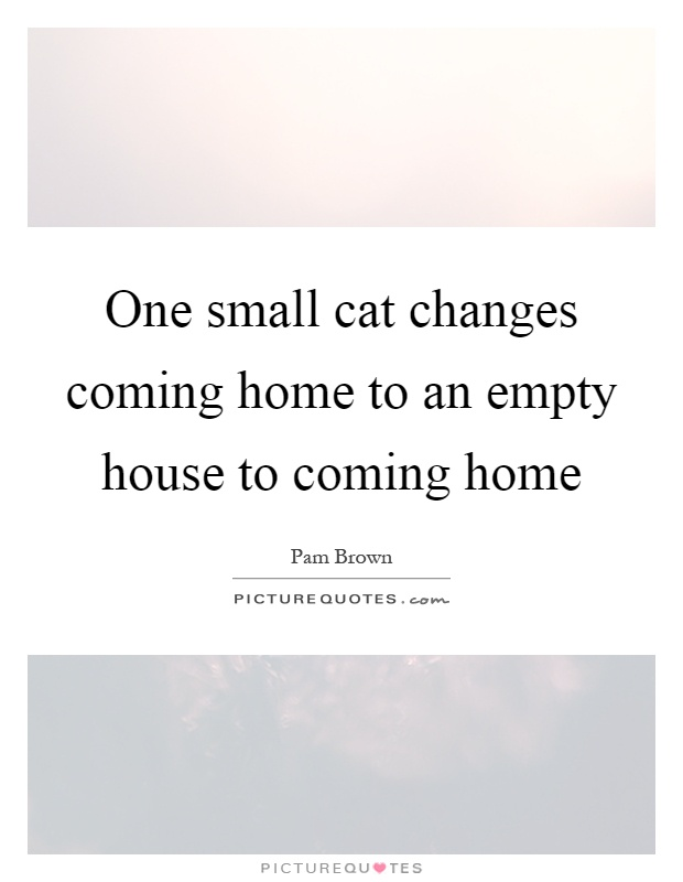 One small cat changes coming home to an empty house to coming home Picture Quote #1