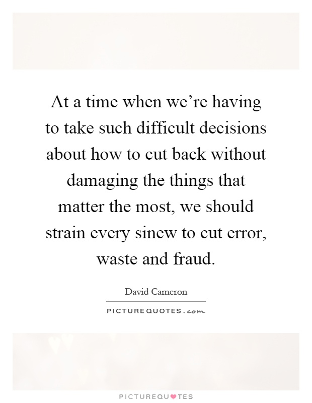 At a time when we're having to take such difficult decisions about how to cut back without damaging the things that matter the most, we should strain every sinew to cut error, waste and fraud Picture Quote #1