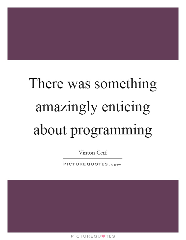 There was something amazingly enticing about programming Picture Quote #1