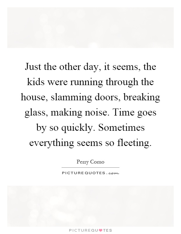 Just the other day, it seems, the kids were running through the house, slamming doors, breaking glass, making noise. Time goes by so quickly. Sometimes everything seems so fleeting Picture Quote #1
