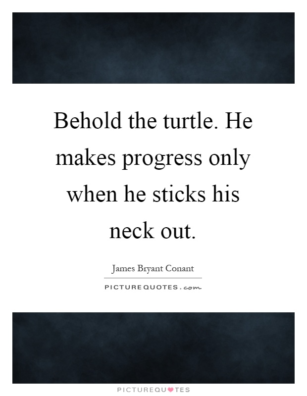 Behold the turtle. He makes progress only when he sticks his neck out Picture Quote #1