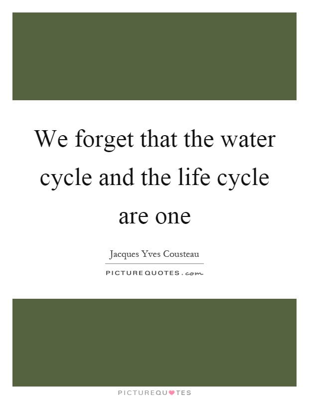 We forget that the water cycle and the life cycle are one Picture Quote #1