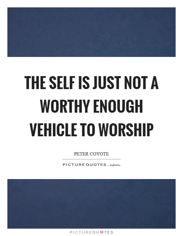 The self is just not a worthy enough vehicle to worship Picture Quote #1