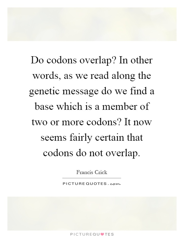 Do codons overlap? In other words, as we read along the genetic message do we find a base which is a member of two or more codons? It now seems fairly certain that codons do not overlap Picture Quote #1