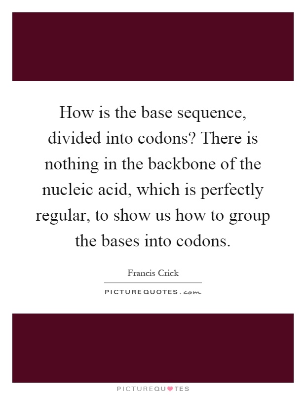 How is the base sequence, divided into codons? There is nothing in the backbone of the nucleic acid, which is perfectly regular, to show us how to group the bases into codons Picture Quote #1
