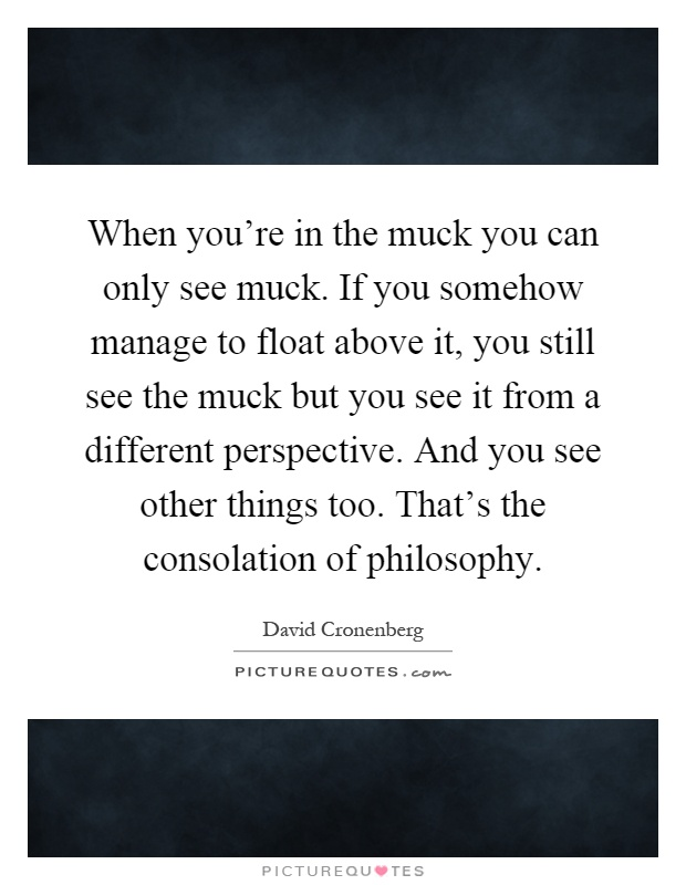 When you're in the muck you can only see muck. If you somehow manage to float above it, you still see the muck but you see it from a different perspective. And you see other things too. That's the consolation of philosophy Picture Quote #1