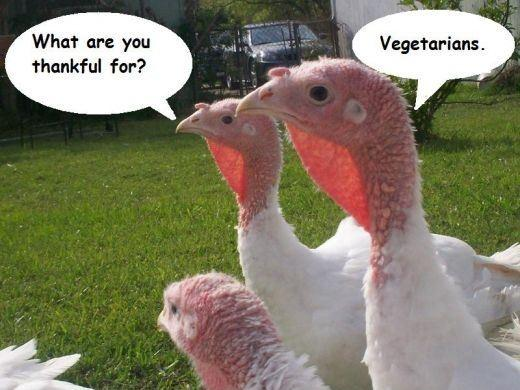 What are you thankful for. Vegetarians Picture Quote #1