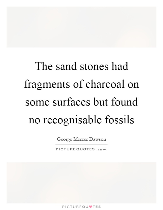 The sand stones had fragments of charcoal on some surfaces but found no recognisable fossils Picture Quote #1