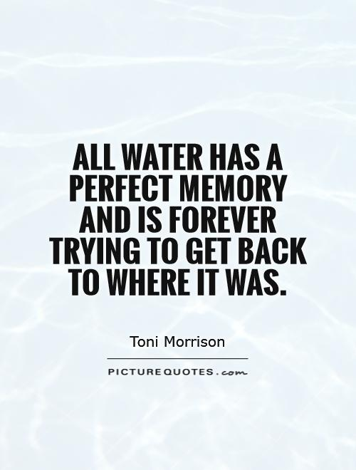 All water has a perfect memory and is forever trying to get back to where it was Picture Quote #1