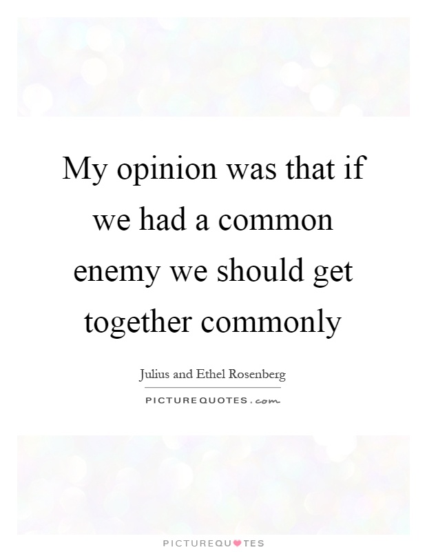My opinion was that if we had a common enemy we should get together commonly Picture Quote #1