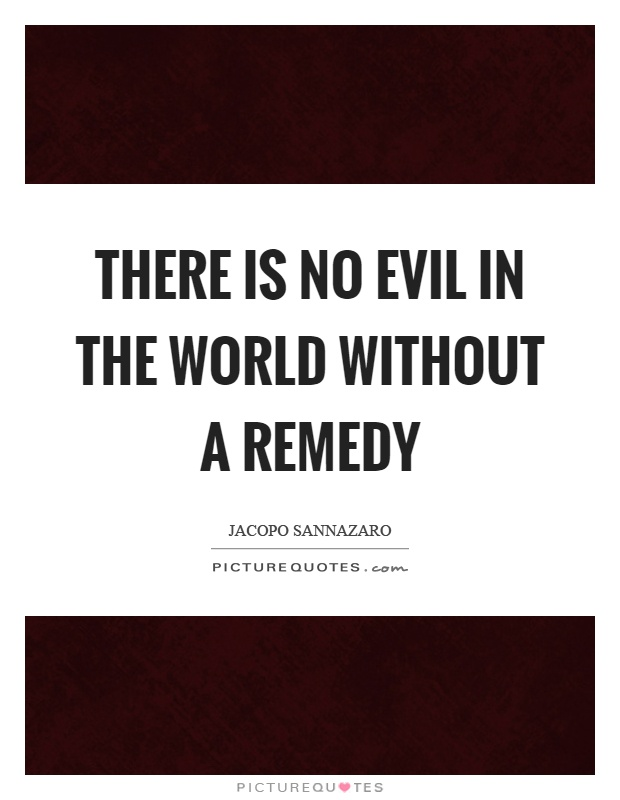 There is no evil in the world without a remedy Picture Quote #1