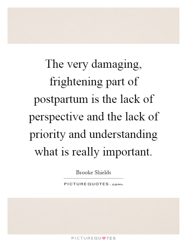 The very damaging, frightening part of postpartum is the lack of perspective and the lack of priority and understanding what is really important Picture Quote #1
