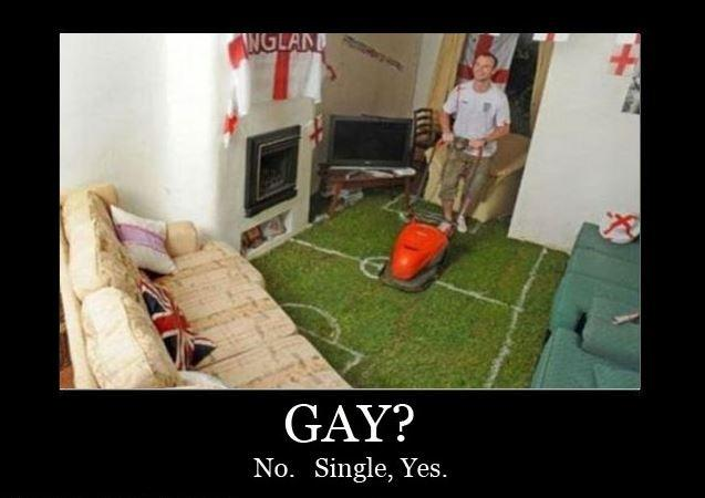 Gay? No. Single, yes Picture Quote #1