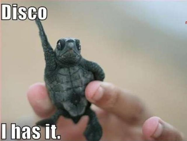 Disco. I has it Picture Quote #1
