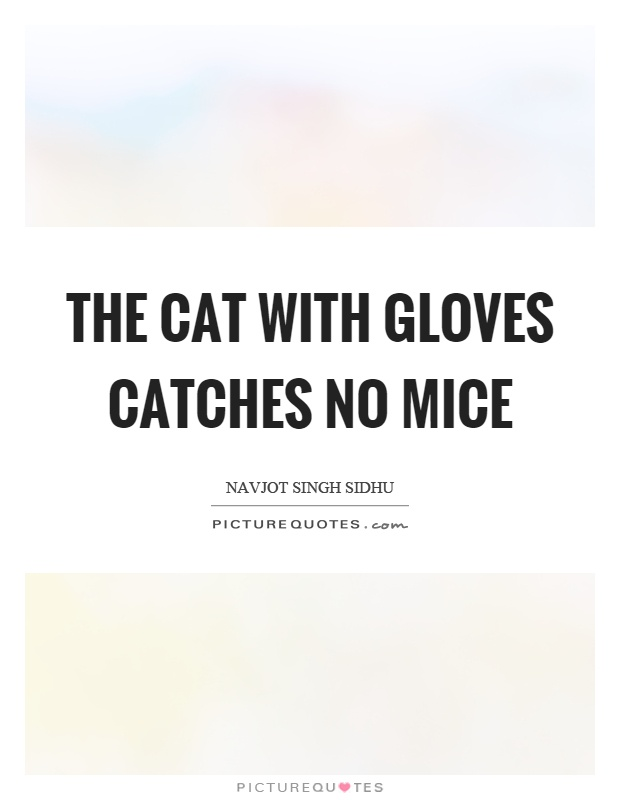 The cat with gloves catches no mice Picture Quote #1