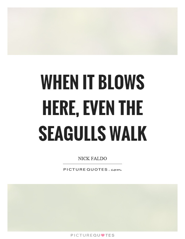 When it blows here, even the seagulls walk Picture Quote #1