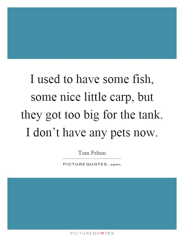 I used to have some fish, some nice little carp, but they got too big for the tank. I don't have any pets now Picture Quote #1