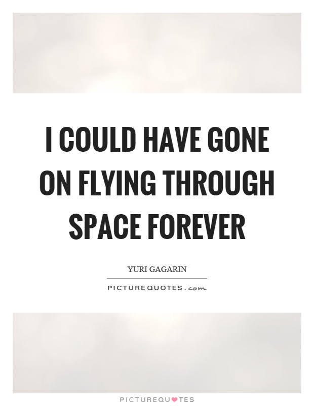 I could have gone on flying through space forever Picture Quote #1