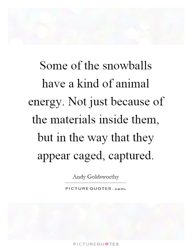 Some of the snowballs have a kind of animal energy. Not just because of the materials inside them, but in the way that they appear caged, captured Picture Quote #1