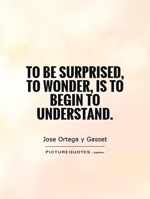 To be surprised, to wonder, is to begin to understand Picture Quote #1