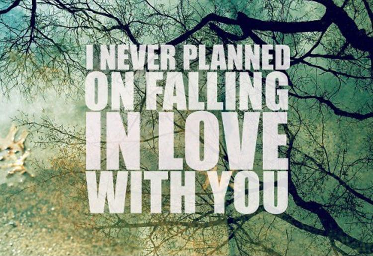I never planned on falling in love with you Picture Quote #1