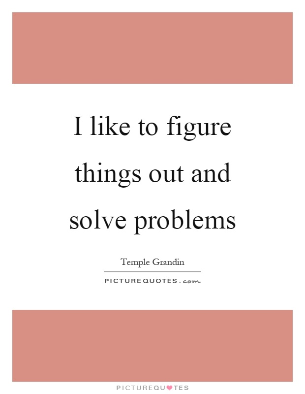 I like to figure things out and solve problems Picture Quote #1