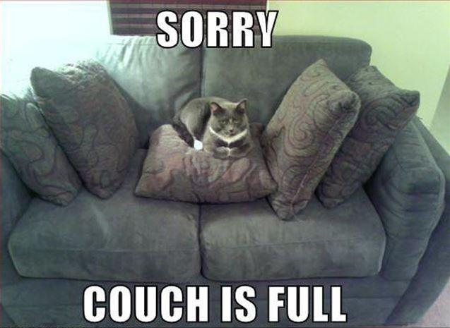 Sorry couch is full Picture Quote #1