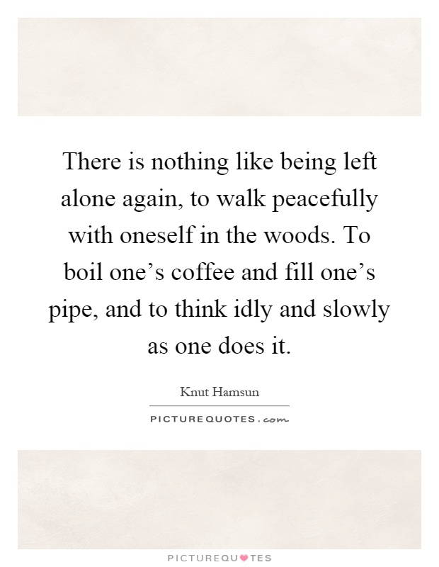 There is nothing like being left alone again, to walk peacefully with oneself in the woods. To boil one's coffee and fill one's pipe, and to think idly and slowly as one does it Picture Quote #1