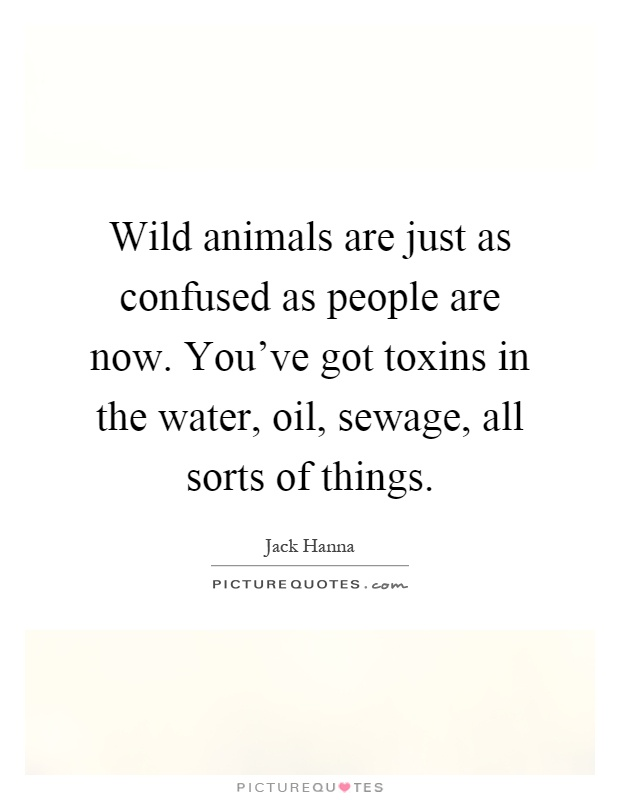 Wild animals are just as confused as people are now. You've got toxins in the water, oil, sewage, all sorts of things Picture Quote #1