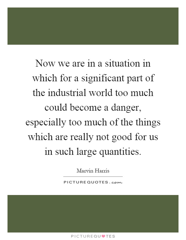Now we are in a situation in which for a significant part of the industrial world too much could become a danger, especially too much of the things which are really not good for us in such large quantities Picture Quote #1