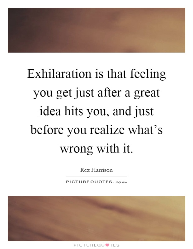 Exhilaration is that feeling you get just after a great idea hits you, and just before you realize what's wrong with it Picture Quote #1