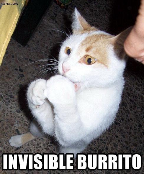 Invisible burito Picture Quote #1