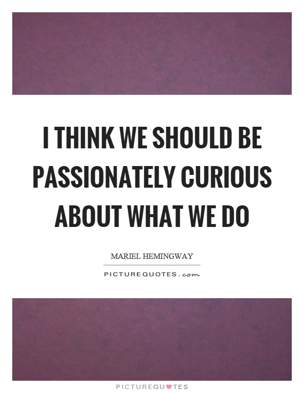 I think we should be passionately curious about what we do Picture Quote #1