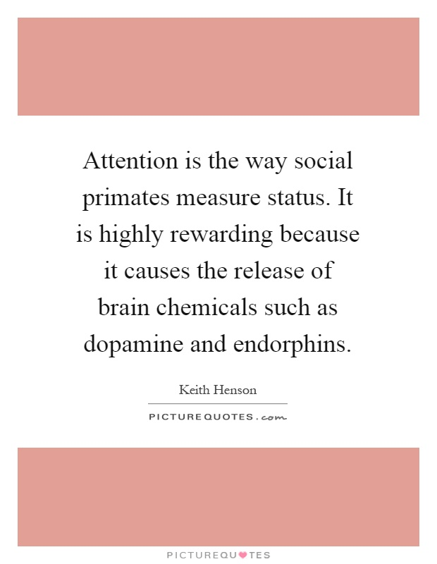 Attention is the way social primates measure status. It is highly rewarding because it causes the release of brain chemicals such as dopamine and endorphins Picture Quote #1