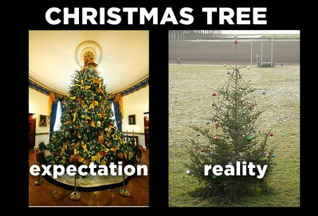 Attractive Christmas Tree. Expectation. Reality Picture Quote #1