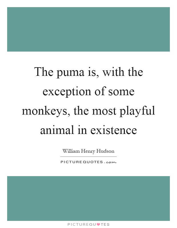 The puma is, with the exception of some monkeys, the most playful animal in existence Picture Quote #1