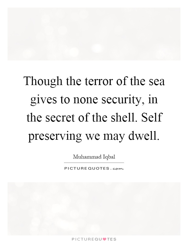Though the terror of the sea gives to none security, in the secret of the shell. Self preserving we may dwell Picture Quote #1