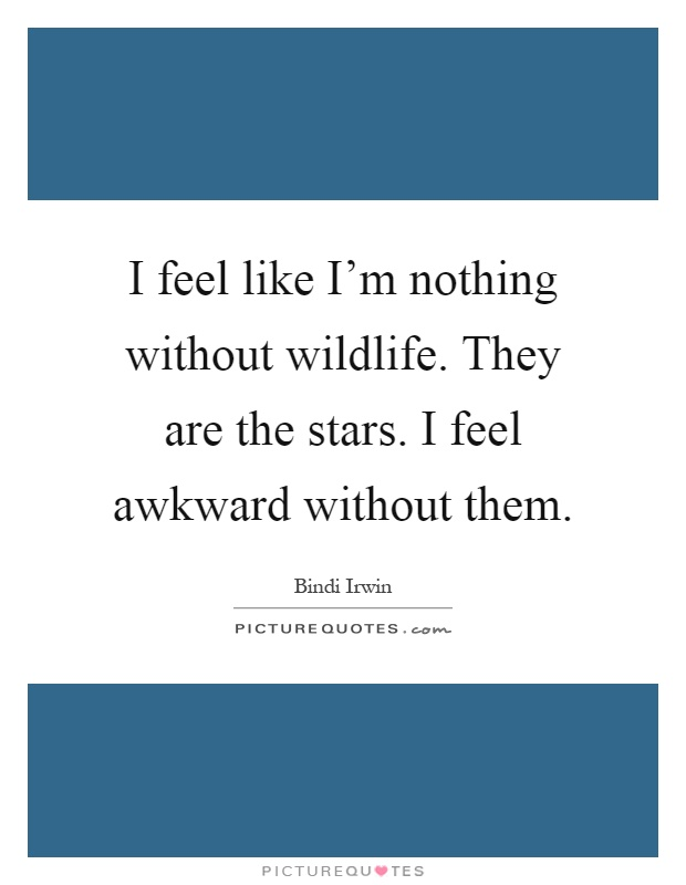 I feel like I'm nothing without wildlife. They are the stars. I feel awkward without them Picture Quote #1